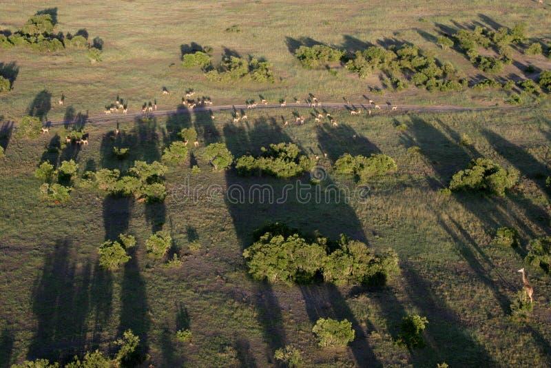 Kenias Landschaften stockbilder