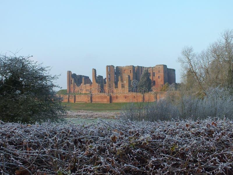 Kenilworth城堡结霜的灌木 免版税库存图片