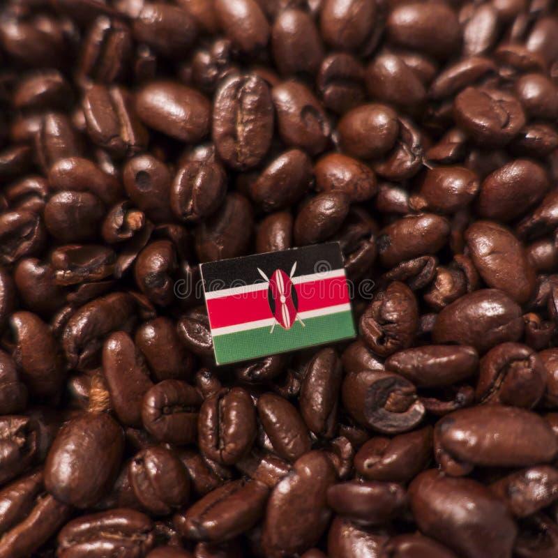 Kenja flaga umieszczająca nad piec kawowymi fasolami obraz royalty free