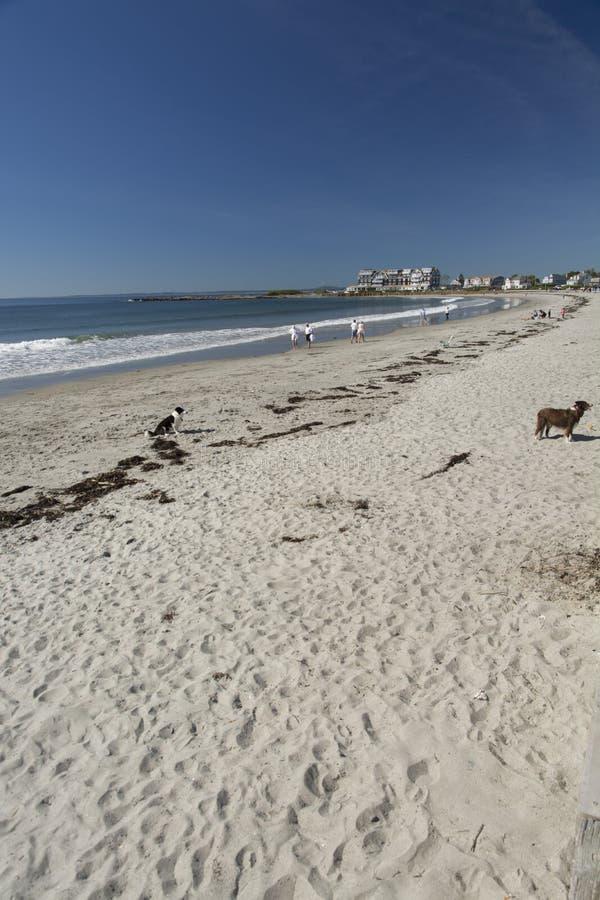 Kennebunk plaża zdjęcie stock