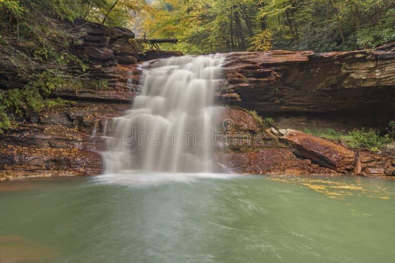 Kennedy Falls sur la branche du nord de la rivière de Blackwater photo libre de droits