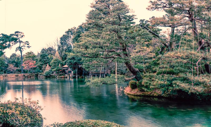 Kenrokuen garden in Kanazawa , Japan. Kenrokuen garden in Kanazawa , One of Japan`s `three most beautiful landscape gardens` in Japan royalty free stock photography