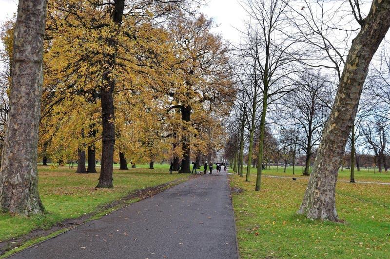 Kensingtontuinen en Hyde Park, Londen, het UK tijdens de herfst stock foto