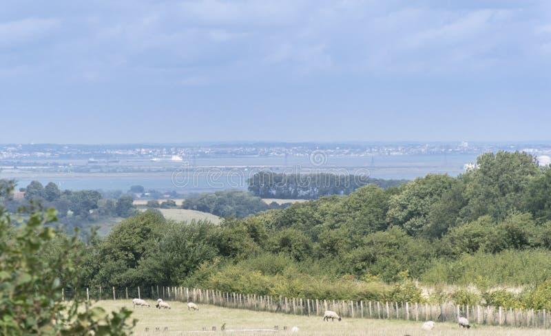 Kent Countryside View stockfotos