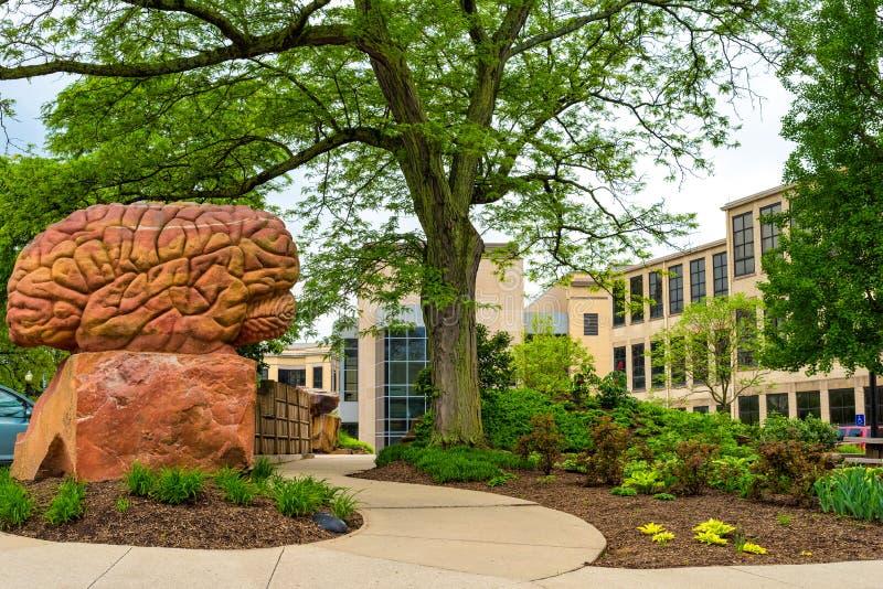 Kent State University Brain Plaza lizenzfreies stockfoto