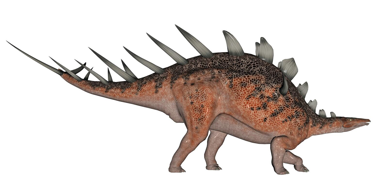 Kentrosaurus dinosaur ilustracji