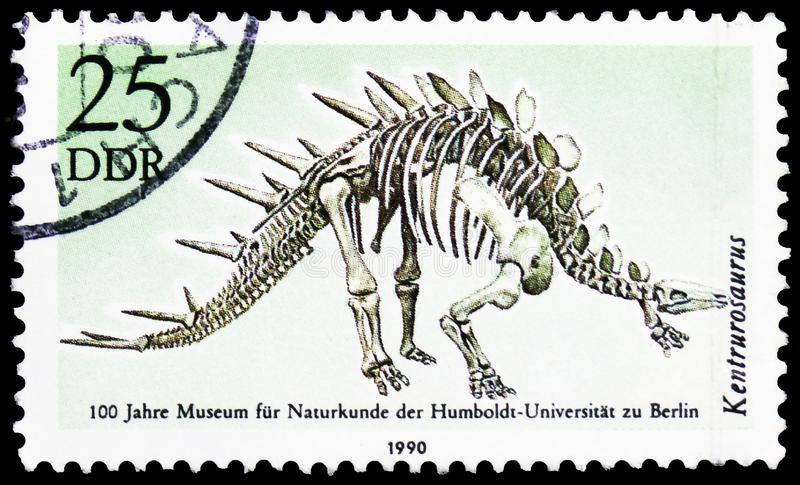 Kentrurosaurus aethiopicus, 100 Years Museum Of Natural History, Humboldt University, Berlin, serie, circa 1990. MOSCOW, RUSSIA - MARCH 30, 2019: A stamp printed stock image