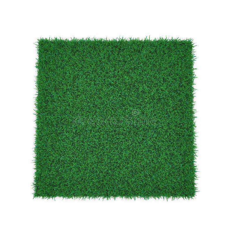 Kentucky-Bluegrass-Gras auf Weiß Abbildung 3D vektor abbildung