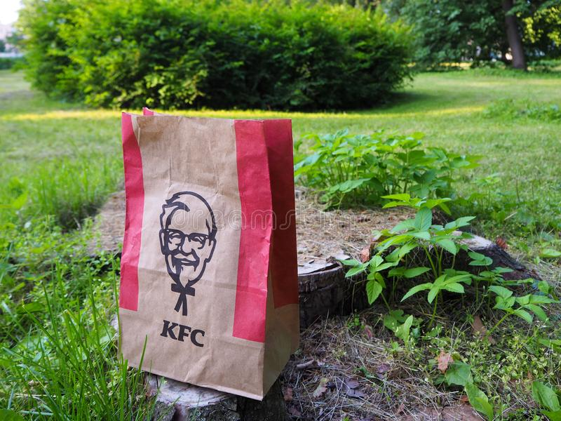 Kentucky Fried Chicken paper bag on a tree stump in the park. royalty free stock photography