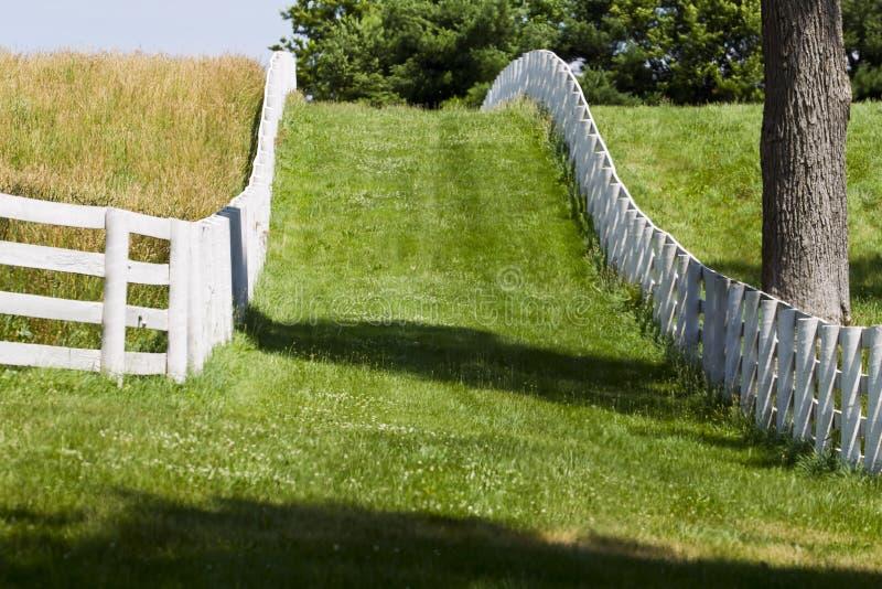 Kentucky Horse Farm stock images