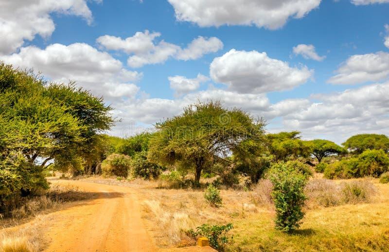 kenya drogi safari fotografia royalty free