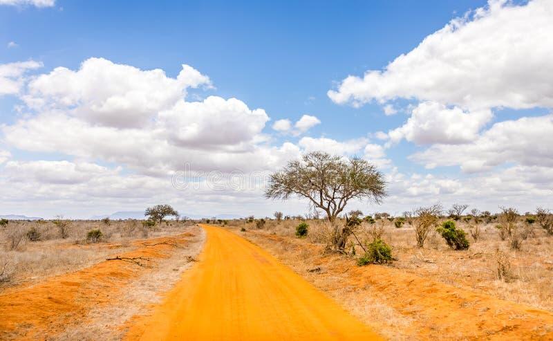 kenya drogi safari zdjęcie royalty free