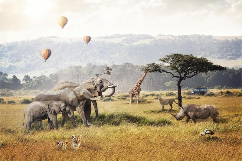 Kenya Safari Dream Trip Scene. Kenya Africa safari dream trip scene with wildlife animals together in a grassland field with hot air balloons and game drive royalty free stock image