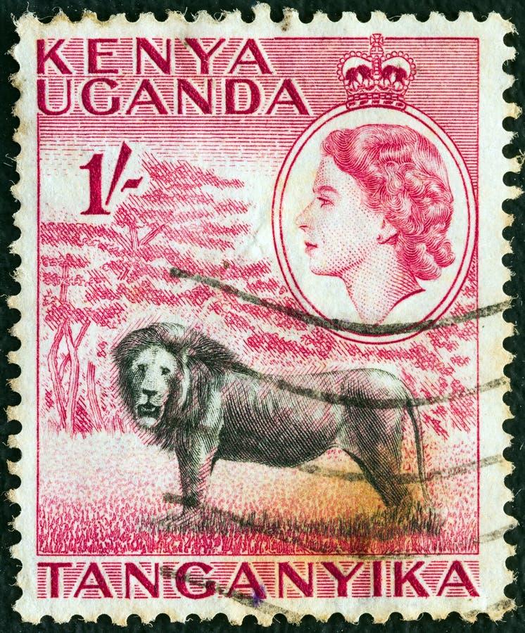 Free KENYA UGANDA TANGANYIKA - CIRCA 1954: A Stamp Printed In Kenya Uganda Tanganyika Shows A Lion And Queen Elizabeth II, Circa 1954. Stock Photography - 156914622