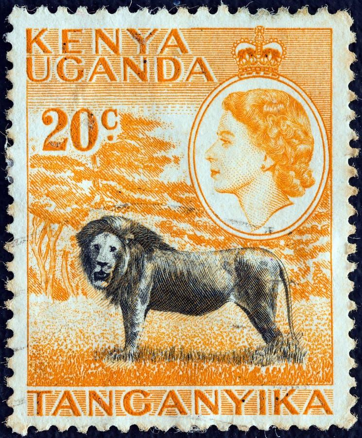 Free KENYA UGANDA TANGANYIKA - CIRCA 1954: A Stamp Printed In Kenya Uganda Tanganyika Shows A Lion And Queen Elizabeth II, Circa 1954. Royalty Free Stock Photos - 156914648