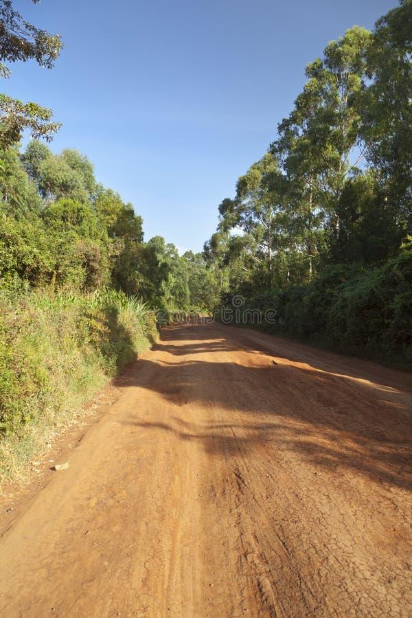 Kenyan Dirt Road típico fotografia de stock