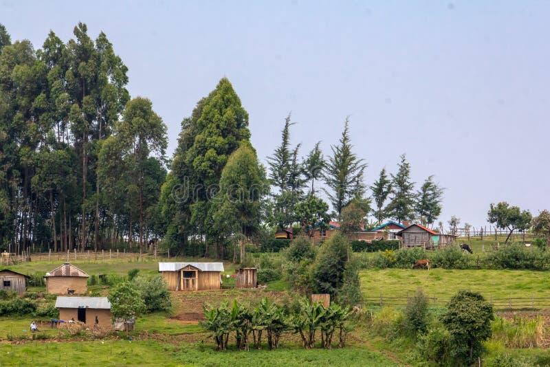 Kenyan Farmland image libre de droits