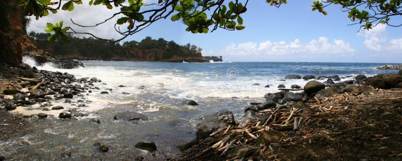 Keokea海滩全景Kapaau夏威夷 免版税库存照片