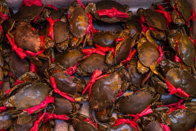 Kep Camboja, mercado do caranguejo imagem de stock