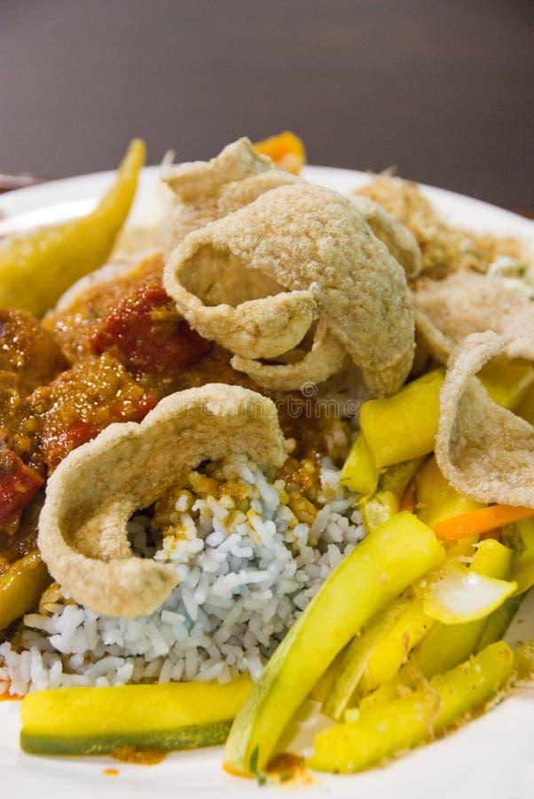 Kerabu di Nasi, alimento malese immagine stock