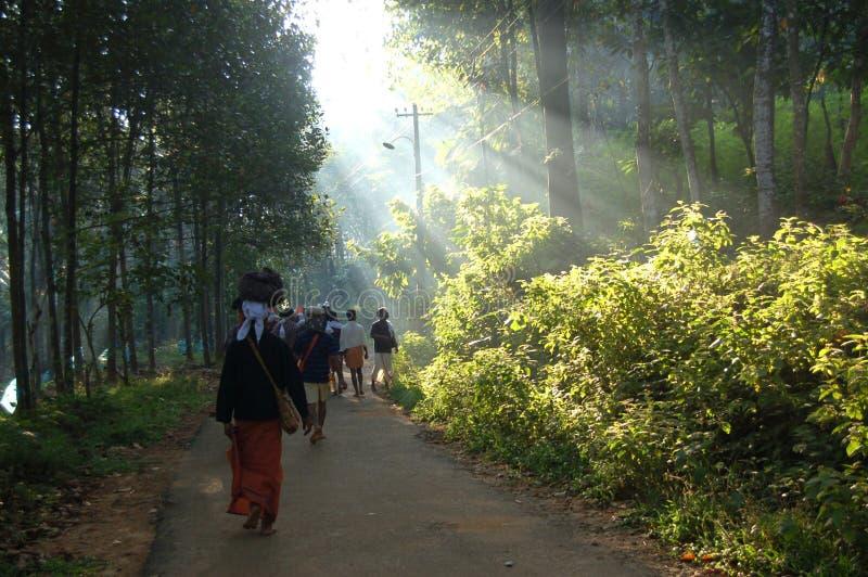 Kerala fotografia de stock
