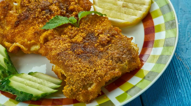 Kerala-Art-Fischrogen lizenzfreies stockfoto