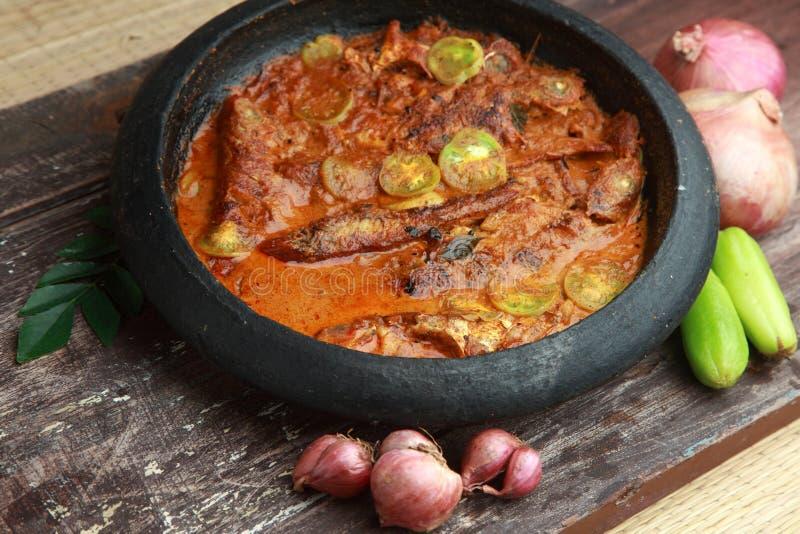 Kerala-Fisch-Curry lizenzfreies stockfoto