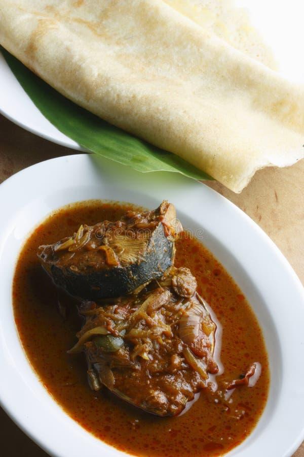 Kerala-Fischcurry lizenzfreie stockfotografie