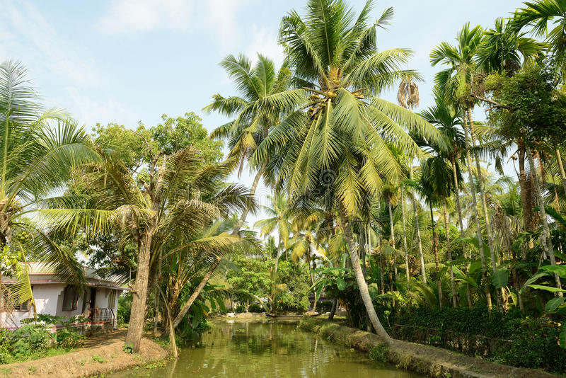 Kerala state in India stock images