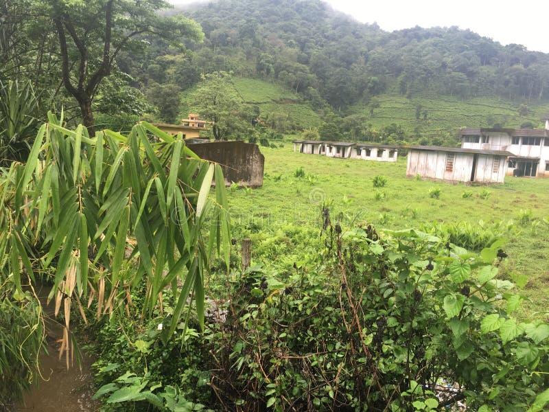 Download Kerala-Tourismusbestimmungsort-Indien-wayanad Stockbild - Bild von indien, tourismus: 90236215
