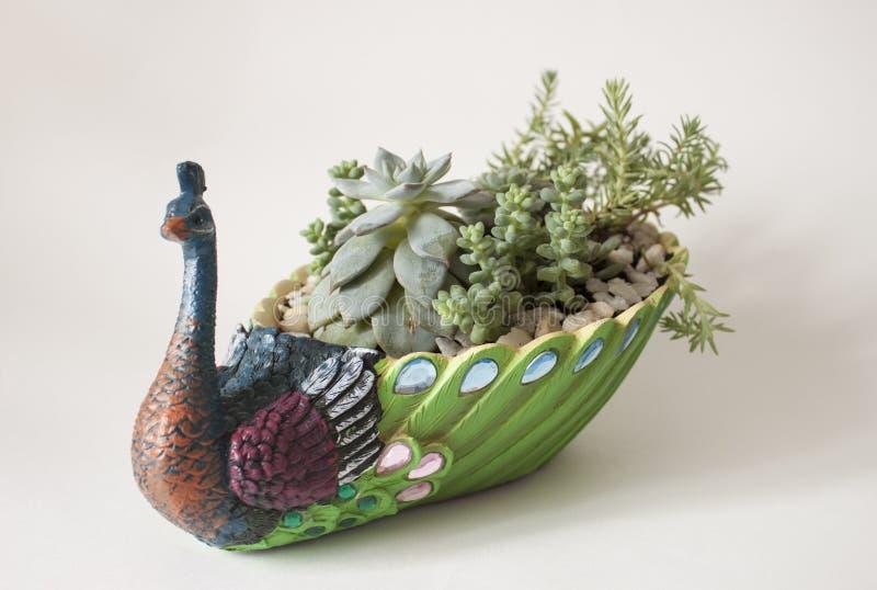 Keramischer Blumentopf in Form eines Pfaus stockbild