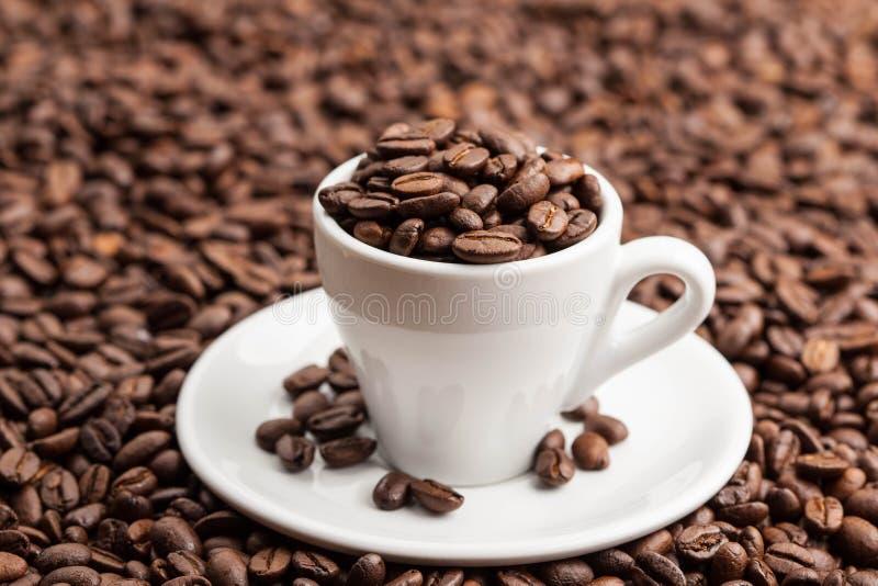 Keramisk kopp i grillade kaffebönor royaltyfri fotografi