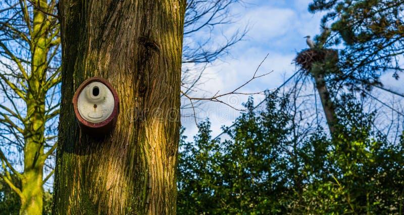 Keramiskt fågelhus som hänger på en trädstam, en naturbakgrund, en trädgård och naturgarneringar royaltyfri bild