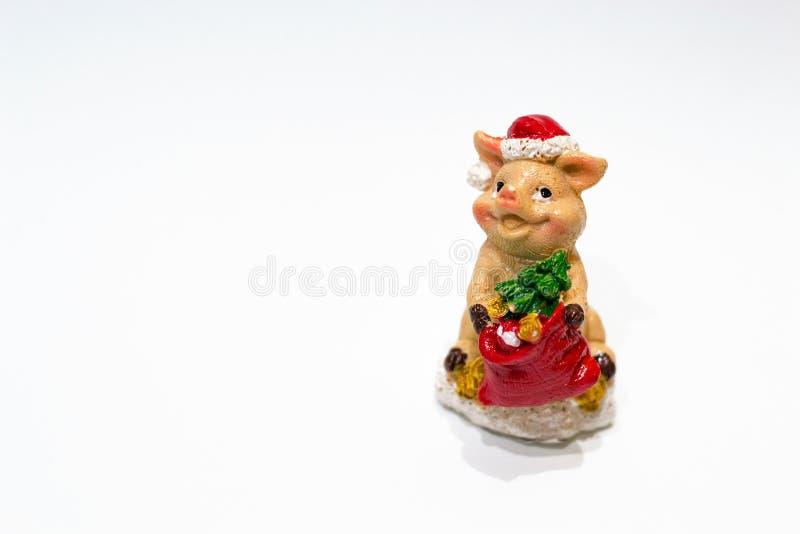 Keramiskt svin för julleksak med granträdet och hatt som ett symbol av det nya 2019 året för bergskam på vit bakgrund Begrepp av  fotografering för bildbyråer