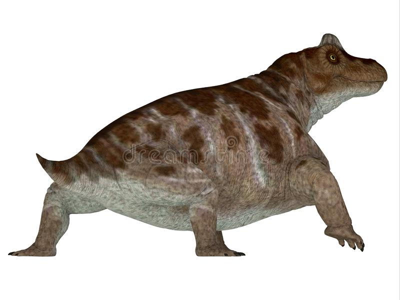 Keratocephalus Dinosaur Tail. Keratocephalus was a primitive herbivore dinosaur that lived in South Africa during the Permian Period stock illustration