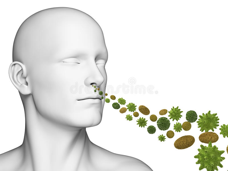Kerel ademhalingsstuifmeel stock illustratie