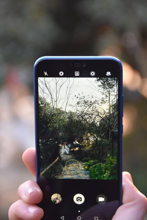 Kerel die een beeld van aard met een smartphone nemen stock afbeelding