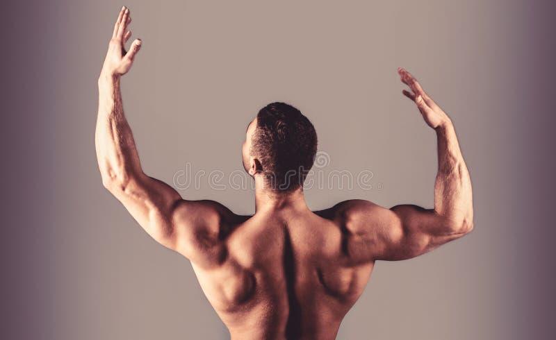 Kerel met mooi torso Mannelijke naakte, gezonde muscularskerel, torsomens Spier achter, spier naakte mens, gespierde achter, royalty-vrije stock foto