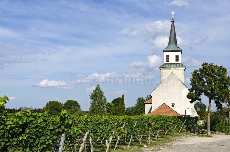Kerk bij een wijngaard royalty-vrije stock afbeeldingen