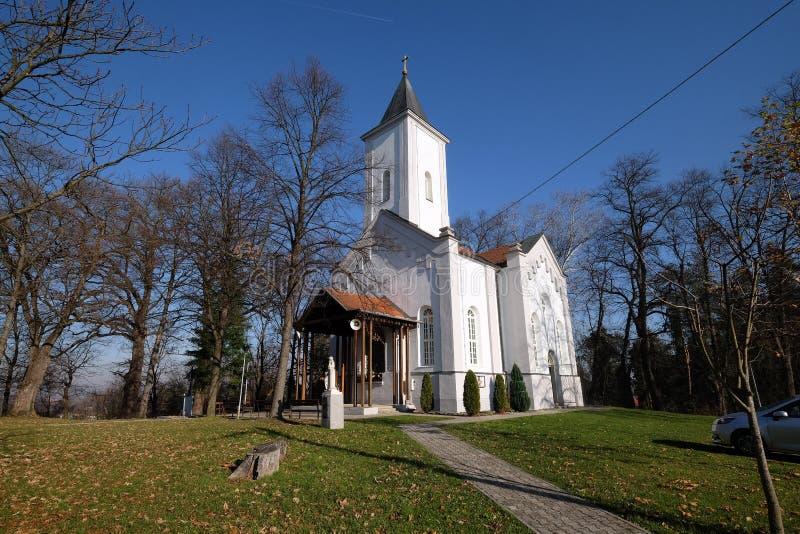 Kerk van Visitation van Maagdelijke Mary in Sisak, Kroatië royalty-vrije stock fotografie