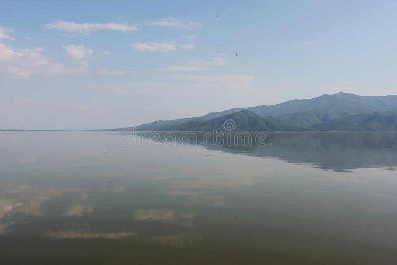 Kerkini塞雷希腊湖  免版税库存图片