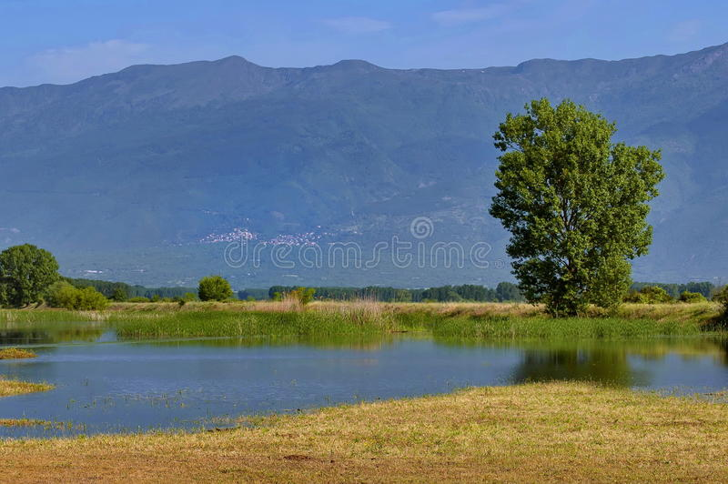 Download Kerkini Lake At Nord Greece Royalty Free Stock Photography - Image: 29219547