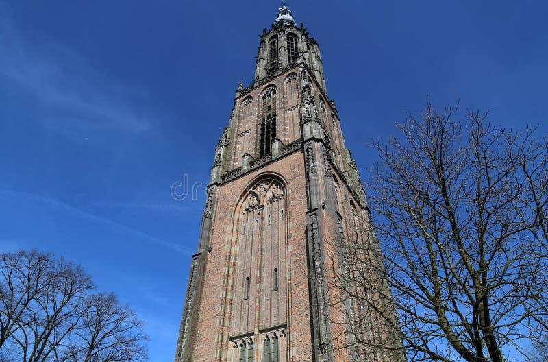 Kerktoren van Amersfoort, Holland royalty-vrije stock fotografie