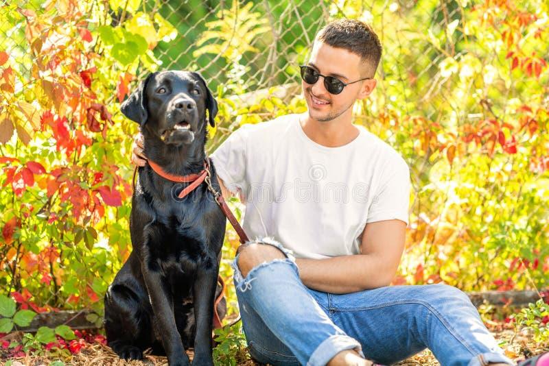 Kerl mit einem Hund geht in einen Park im Herbst stockbild