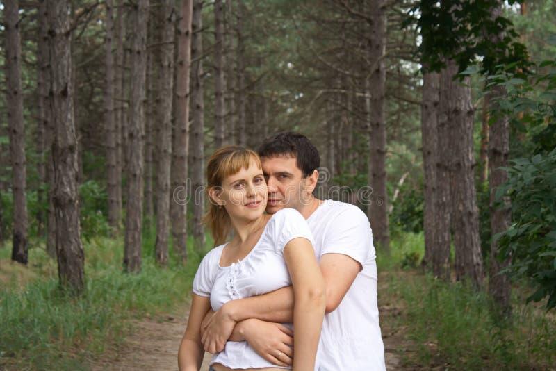 Kerl und das Mädchen auf dem Hintergrund von alten Kiefern lizenzfreie stockfotografie