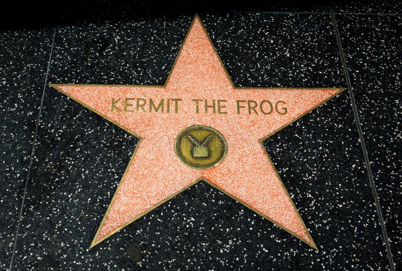 Kermit a estrela da râ imagem de stock royalty free