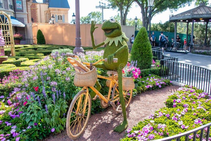 Kermit a figura da exposição do topiary da rã na exposição em Disney World fotografia de stock royalty free