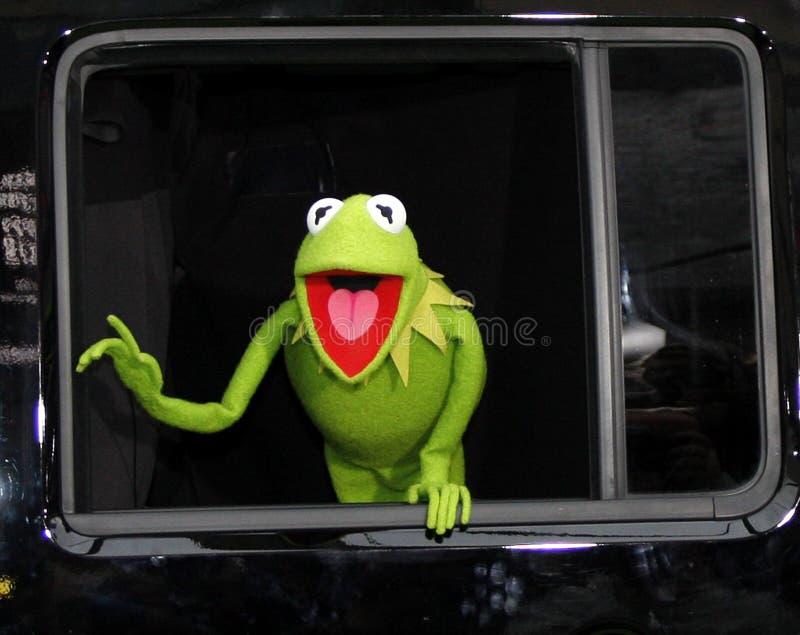 Kermit The Frog fotografia de stock