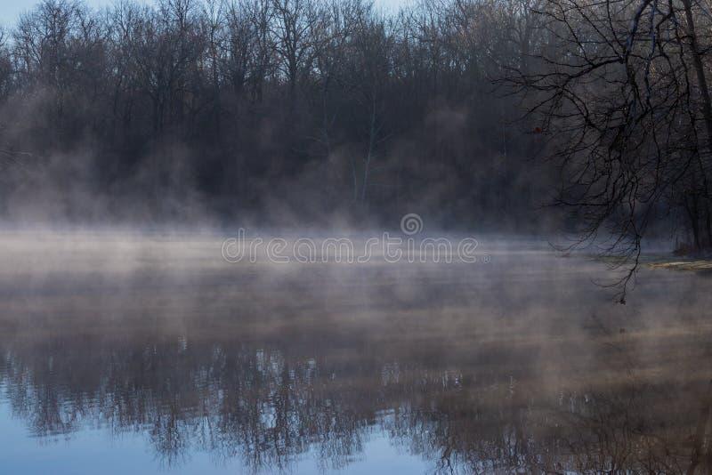 Kernachtige ochtend mistige vijver royalty-vrije stock foto