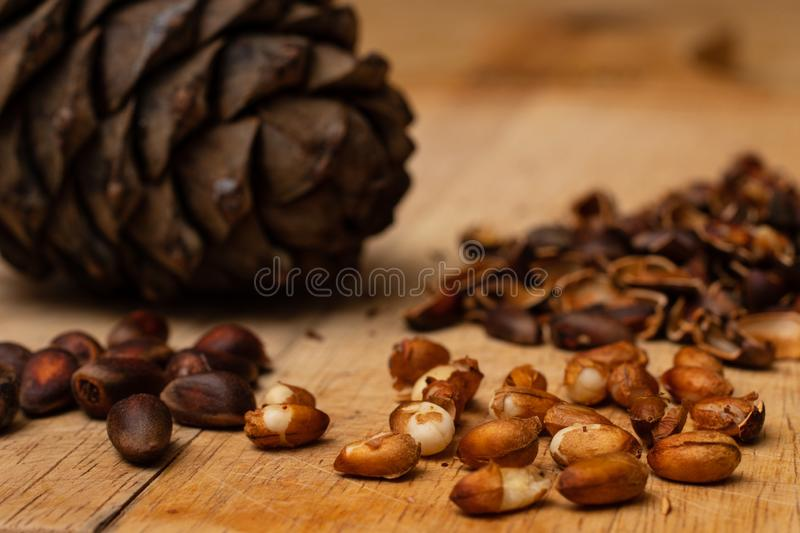 Kernels of cedar nuts, peeled from the shell of Siberian pine cones stock photography